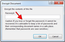 Encrypt document in Excel